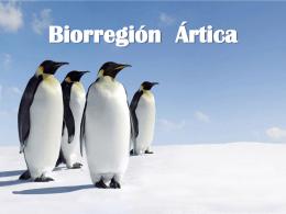 Biorregión Ártica