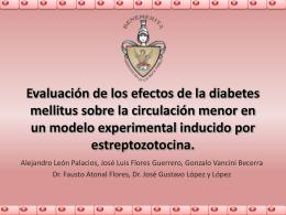 Evaluación de los efectos de la diabetes mellitus