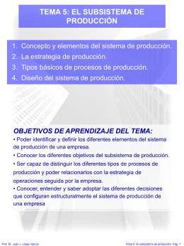 TEMA 5: EL SUBSISTEMA DE PRODUCCIÓN