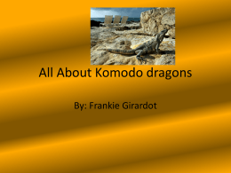 All About Komodo dragons