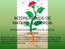 INTERCAMBIOS DE MATERIAY ENERGÍA