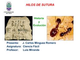 HILOS DE SUTURA.
