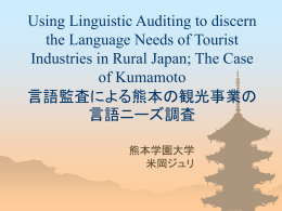 Using Linguistic Auditing to discern the Language