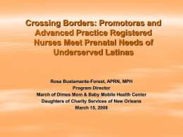 Crossing borders: Promotora and Advanced Practice