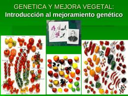 Genética de la Producción