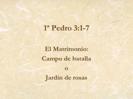 1ª Pedro 3:1-7