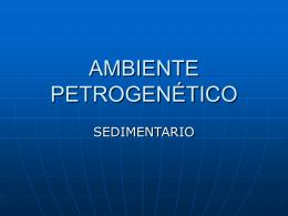 AMBIENTE PETROGENÉTICO