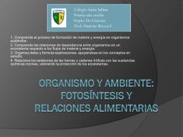 Organismo y ambiente: Fotosíntesis y relaciones