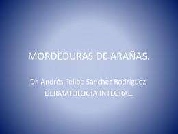 MORDEDURAS DE ARAÑAS.