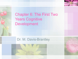 Chapter 6: The First Two Years Cognitive