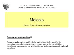Meiosis Producción de células reproductiva