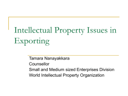 Intellectual Property Issues in Exporting