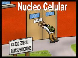 Biología. 2º Bachillerato. Tema 5b: La célula