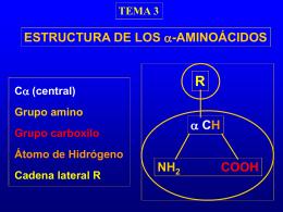 Sin título de diapositiva - Universidad de Alcalá