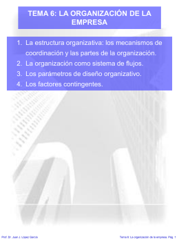 TEMA 6: LA ORGANIZACIÓN DE LA EMPRESA