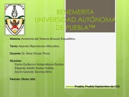 BENEMERITA UNIVERSIDAD AUTÓNOMA DE PUEBLA™