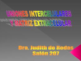 Diapositiva 1 - biomedjudith