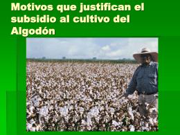 Motivos que justifican el subsidio al cultivo del