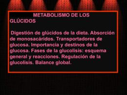 BIOQUÍMICA DEL EJERCICIO