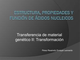 Estructura, propiedades y función de ácidos