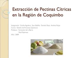 Extracción de Pectinas Cítricas en la Región de