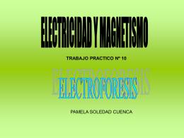 ELECTRICIDAD Y MAGNETISMO TRABAJO PRACTICO Nº 10