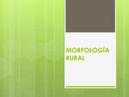 MORFOLOGÍA RURAL