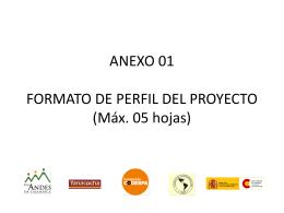 ANEXO 01 FORMATO DE PERFIL DEL PROYECTO (Máx. 05
