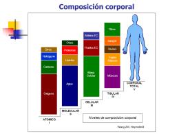 Métodos para valorar la composición corporal
