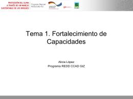 Proceso de preparación Programa REDD CCAD/GTZ en