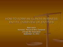HOW TO FORM AN ILLINOIS BUSINESS ENTITY: OVERVIEW
