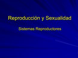 Reproducción y Sexualidad