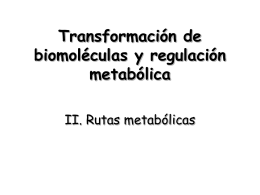 Transformación de biomoléculas y regulación