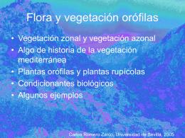 Flora y vegetación orófilas