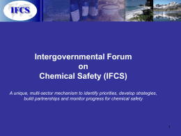 Intergovernmental Forum on Chemical Safety (IFCS)