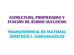 Diapositiva 1 - Bqexperimental`s Blog | Bioquímica