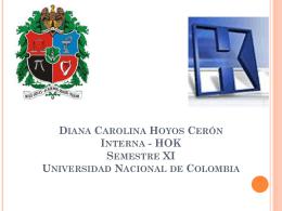 Diana Carolina Hoyos Cerón Interna
