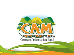 Comisión Ambiental Municipal CAM