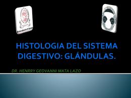 HISTOLOGIA DEL SISTEMA DIGESTIVO: GLÁNDULAS.