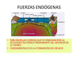 FUERZAS ENDÓGENAS - margotloyolasilva