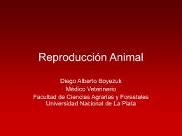 Clasificación reproductiva de las hembras según