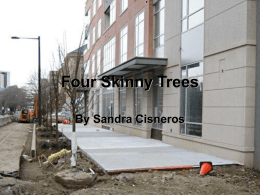 Four Skinny Trees - area1seventh