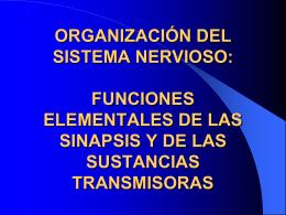 ORGANIZACIÓN DEL SISTEMA NERVIOSO: FUNCIONES