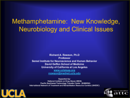 Methamphetamine: New Knowledge, Neurobiology and