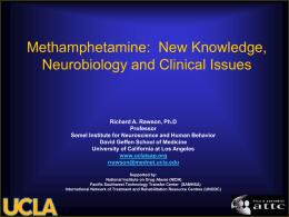 Methamphetamine: New Knowledge, Neurobiology and