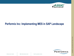 Performix Inc Implementing MES in SAP Landscape