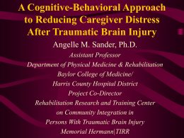 Family Environment of Persons With Traumatic Brain