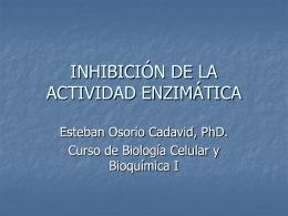 INHIBICIÓN DE LA ACTIVIDAD ENZIMÁTICA