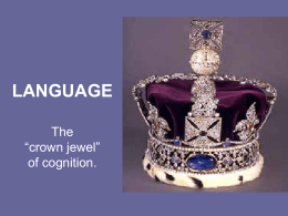 LANGUAGE - TypePad
