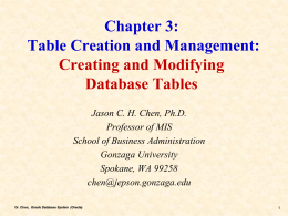 Chapter 3 Effects of IT on Strategy and
